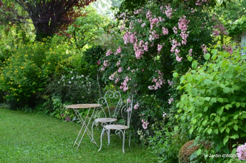potager,chenille,pour le 18 juin,tour du jardin 074.JPG