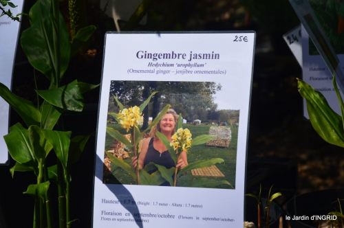 coquelicots,fête des fleurs Lalinde,fouleix,jardinage 160.JPG