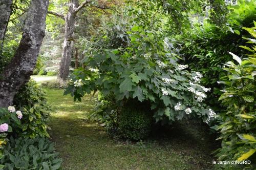 potager,chenille,pour le 18 juin,tour du jardin 061.JPG