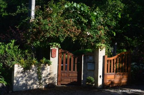potager,chenille,pour le 18 juin,tour du jardin 095.JPG