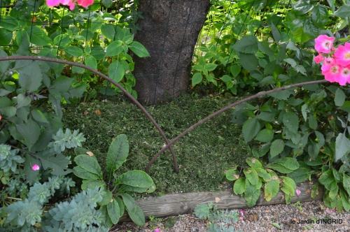 potager,chenille,pour le 18 juin,tour du jardin 089.JPG