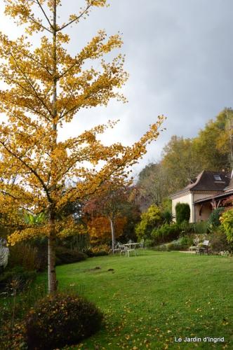 travaux,érable rouge,abeilles,Monpazier,jardin 023.JPG