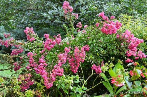 jardin ,bouquet 096.JPG