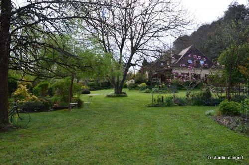 paquerettes,arums,laurier palme,jardin 062.JPG