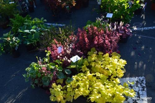 coquelicots,fête des fleurs Lalinde,fouleix,jardinage 056.JPG