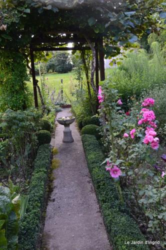 jardin,petit jardin,nénuphard,papillons 053-001.JPG