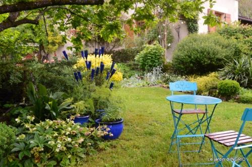 roses,jardin,Le Fleix,bleu 012.JPG