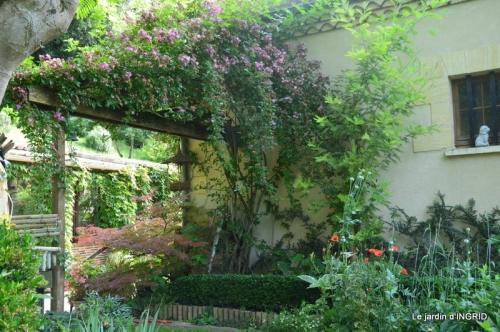 portes ouvertes,taille marguerittes,jardin 050.JPG