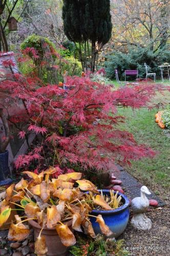 Romefort,bord de Creuse,vent,feuilles,jardin,canal 119.JPG
