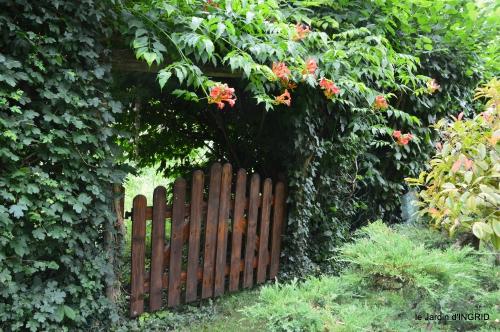 jardin,papillons,Cadouin,légumes,Sophie, 211.JPG
