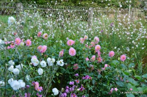 jardin Mme Perichou,grandes fleurs,bouquet,jardin 031.JPG