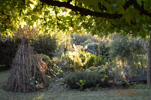 citrouilles,jardin,Combarel 034.JPG