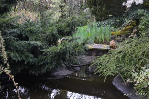 semis,bassin,tour du jardin 075.JPG