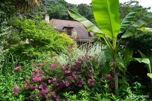 potager,chenille,pour le 18 juin,tour du jardin 039.JPG