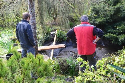 semis,bassin,tour du jardin 094.JPG