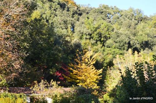 jardin automne,voisinage,canal 183.JPG