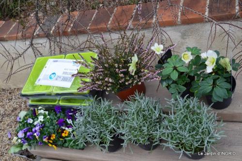jardinière,insectes,achats 029.JPG