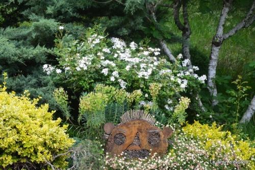les roses au jardin 040.JPG