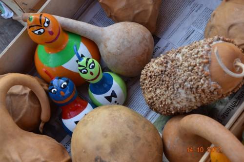 champignons,citrouilles,st Mayme de Péreyrol,fuschias,jardin aut 063.JPG