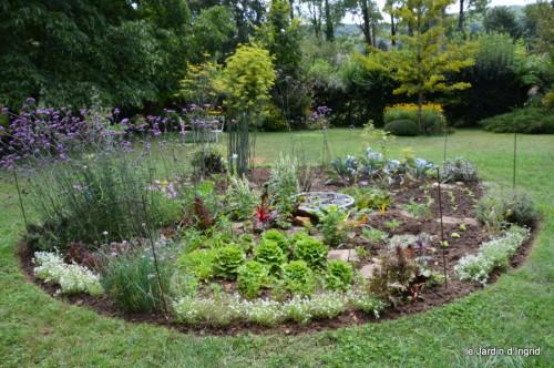 pluviomètre,hibiscus,jardin,coucher de soleil 023.JPG