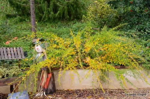 automne,arbres,inondation 015.JPG