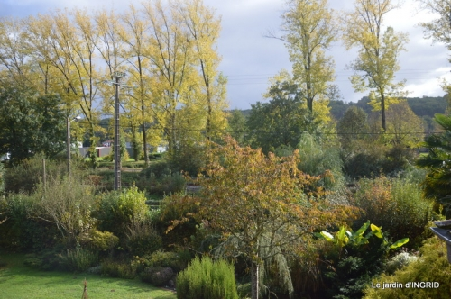 Citrouille à Issigeac,Julie,jardin 074.JPG