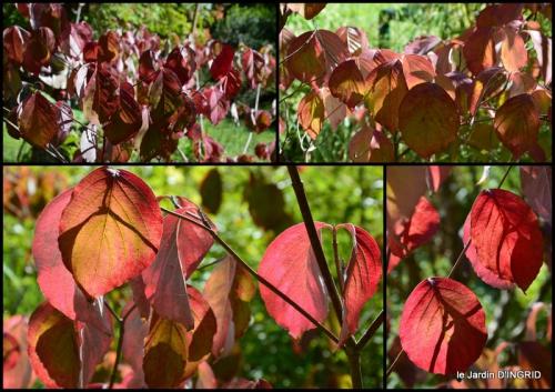 2015-09-23 jardin pour l'automne,affiche vide jardin.jpg
