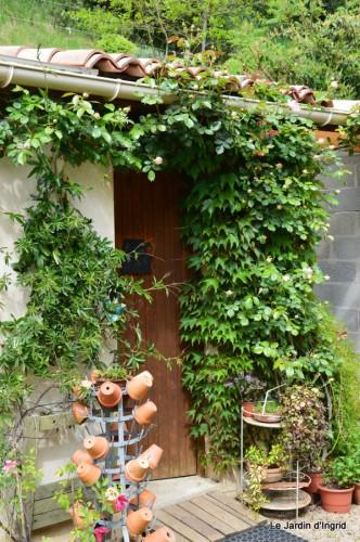 géraniums,glycine Monpazier,cabane,arums,fleurs sauvages 177.JPG