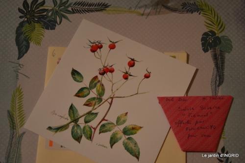 enveloppes ,bouquet tulipes 027.JPG
