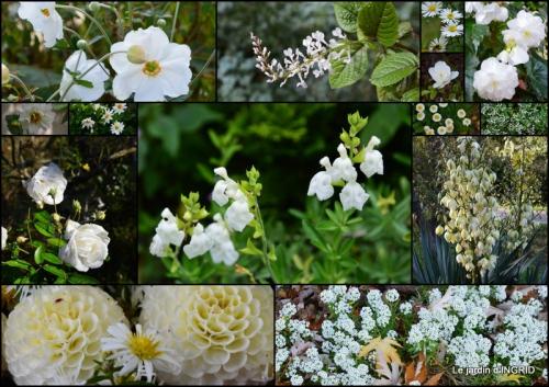 2015-09-06 dahlias,massifs refaits,Lalinde,jardin2.jpg
