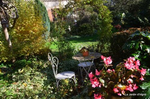 sauges,plectanthrus,Romane,canal,manthe r.,automne 153.JPG