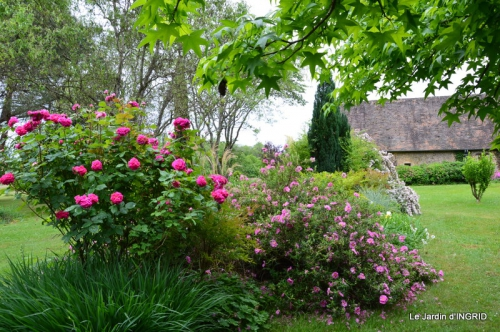 maison,jardin Bernadette,et jardin Claudine 046.JPG
