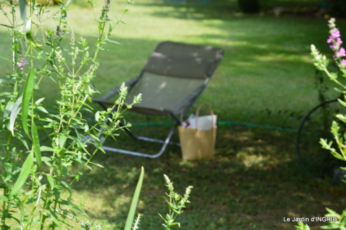 robe Julie,jardin,le flambé,lantanas,dahlias 107.JPG