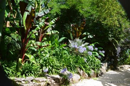 bambous Roque Gageac,jardin,bouquet 138.JPG