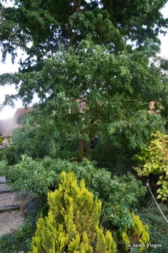 jardin de Marie,éoliennes,Ciron,Angles,Fontgombault 086.JPG