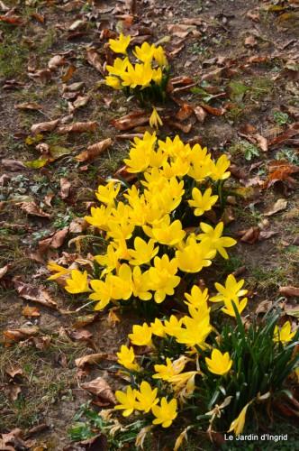 jardin début d'automne ,Sophie,rouge 060.JPG