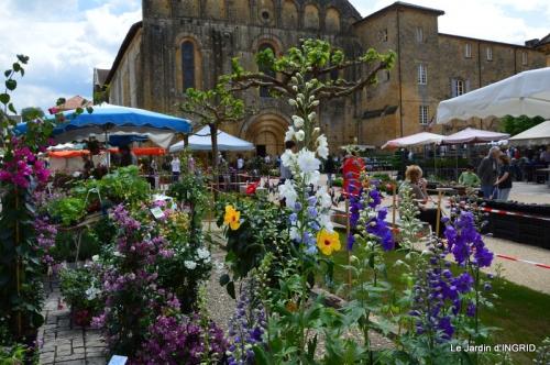 Cadouin,ancolies,roses,pollen,osier,photos Fabien,coquelicots 042.JPG