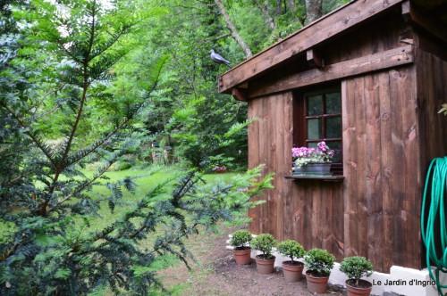 Arya,roses,cygnes,coulobre,nigelles,abeille,cabane 131.JPG