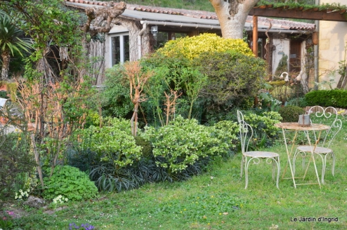 printemps jardin, 062.JPG