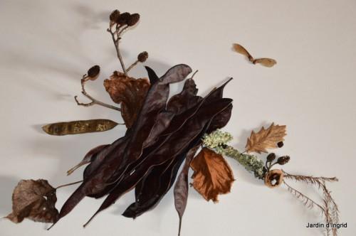 matin d'hiver,tableaux de fleurs janvier 056.JPG