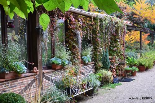 jardin automne,voisinage,canal 004.JPG