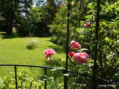 cygnes,Sophie,jardin en mai 063.JPG