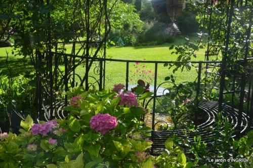 mon jardin,dégats buis, 085.JPG