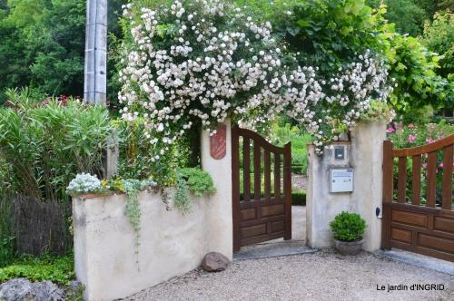 roses,visiteuses,Sophie 033.JPG