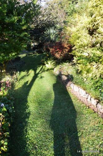 jardin,puces Lasmonzie,asters 002.JPG