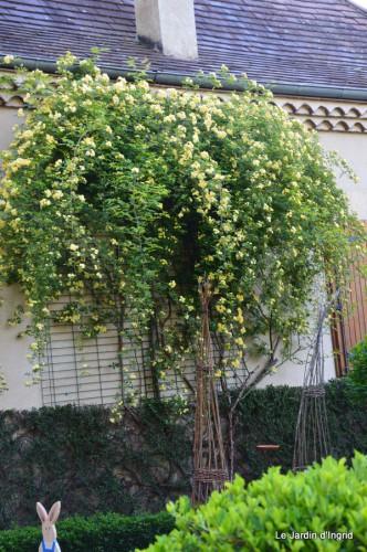 mésanges,escargots,ros. de banks,abeilles,Monpazier,Banes,Forêt 094.JPG