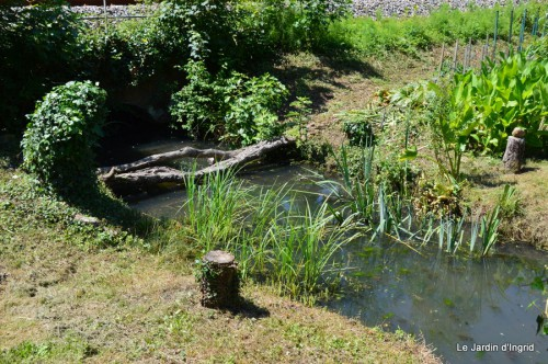 chez Fabien,le canal,jardin,hémérocalles,le souci,potager 160.JPG