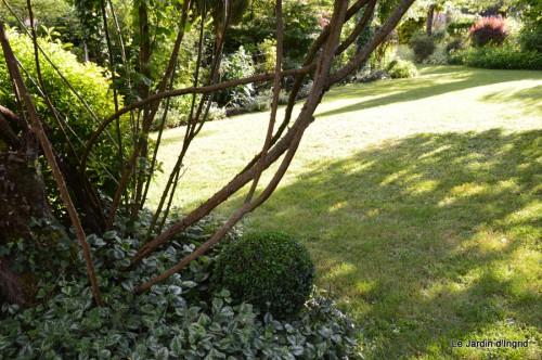 canal,fleurs blanches,marguerites,LE FLEIX,osier 181.JPG