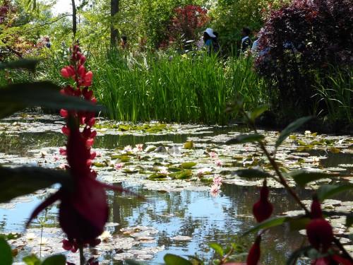 Normandie,jardin Monet,baie de Somme,chez Marylaur 220.JPG