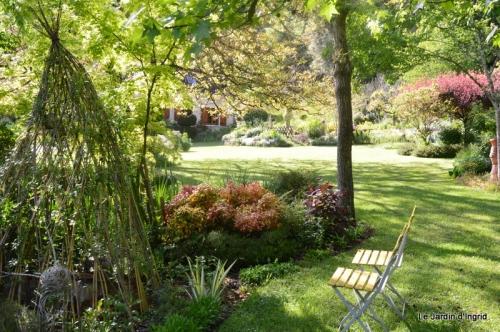 jardin avril et mai, 116.JPG